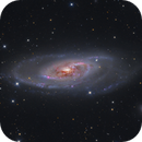 M106 LRGB with HaOIII core,                                Kevin Morefield