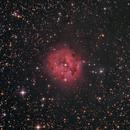 IC5146 - The Cocoon Nebula,                                Barry E.