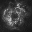 NGC 2237,                                ssprohar