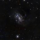 NGC 4395 Spiral Galaxy,                                Roger Menard