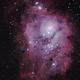 Lagoon Nebula,                                Murray Fox
