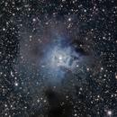 Iris Nebula. NGC 7023,                                José Manuel Taverner Torres