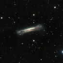 NGC 3628 - Hamburger Galaxy,                                JonathanBlake