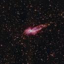 NGC 6302 - The Bug Nebula:  Cropped (Rev.3)  and Full Frame Versions,                                Fernando