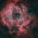 Rosette Nebula (C49) and NGC2244/ C50 HOO,                                JD