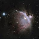 Orion Nebula,                                Giovanni Fabris
