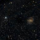 NGC 6951 - widefield,                                Gotthard Stuhm