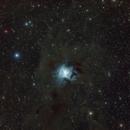 NGC7023 (Iris Nebula),                                Wilson Yam