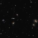 Abell 2151  --  Hercules Galaxy Cluster,                                Greg Allegretti