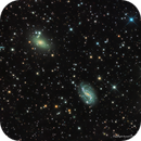NGC 3100 and NGC 3095—Galaxy Pair in  Antlia,                                Russ Carpenter