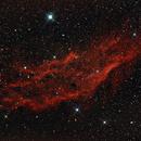 California Nebula,                                Ed Albin