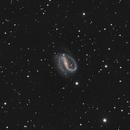 NGC 7479 Helix galaxy,                                Patrice RENAUT