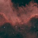 Cygnus Wall,                                David Johnson
