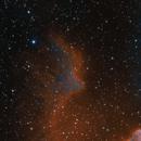 Gamma Cassiopeae and IC59/63 in Ha+ Blue,                                JNieto