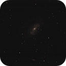 Bortle 8 Galaxy attempt: next to impossible.,                                Dennys_T