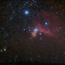 Horsehead Nebula region,                                thakursam