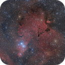 X'mas tree cluster / ngc 2264,                                noodle