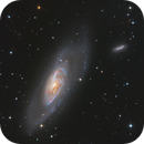 M106 and NGC 4217,                                Jens Zippel