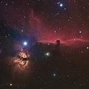 Horsehead Nebula,                                Canrith314