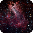 M17 Omega or Swan Nebula,                                Djt