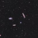 Leo Triplet 2021,                                fyrfytr310