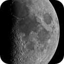 First Quarter Moon,                                David Cheng