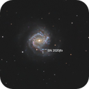 M61 and SN 2020jfo,                                Victor Van Puyenb...