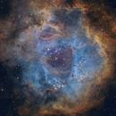 Rosette Nebula in SHO,                                starfield