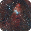 NGC2264 - Cone Nebula and the Christmas tree cluster,                                Diego Cartes
