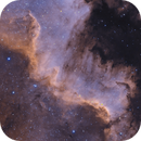 Cygnus Wall,                                Kurt De Poorter