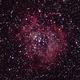 Rosette Nebula - C 49,                                Mirinael