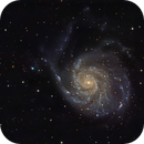 M101,                                BergAstro