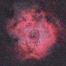 Rosette Nebula - NGC 2244,                                Jordi Compte
