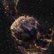 IC443 Jellyfish Nebula,                                Randal Healey