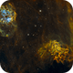 IC405 and IC410 starless- the flaming star and the tadpoles- first SHO-processing ever,                                Daniel Pázmán
