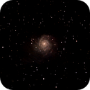 M74,                                Dave