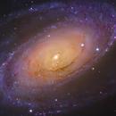 Approaching M81 - HaRGB - Liverpool Telescope,                                Daniel Nobre