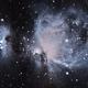 Orion (M42),                                Pierre D.