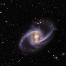 NGC 1365,                                Rick Stevenson
