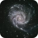 M101 - Pinwheel Galaxy,                                burble