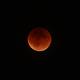 Blood Moon. 27 Sept 2015,                                Jim Tallman