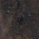 LDN 673 - A dark cloud in a sea of stars,                                Gabriel Siegl