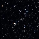 M35,                                David Redwine