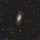 NGC 2903,                                Chris Pagan