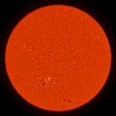 2020.06.09 Sun Full Disk H-Alpha,                                Vladimir