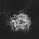 NGC2239 Rosette Nebula in Ha - First test,                                Christophe Perroud