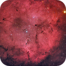 IC1396,                                Steve Yan
