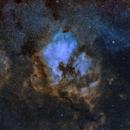 NGC7000 Region,                                Christian Schulbert