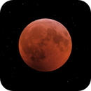 Eclissi lunare,                                Alessandro Biasia
