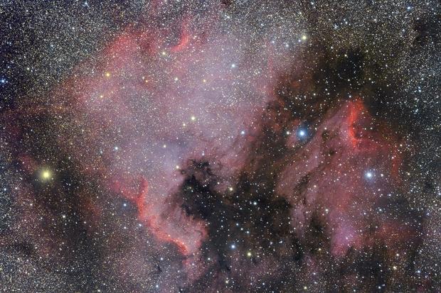 North America Nebula and Pelican Nebula,                                Ken-ichiro Tanaka
